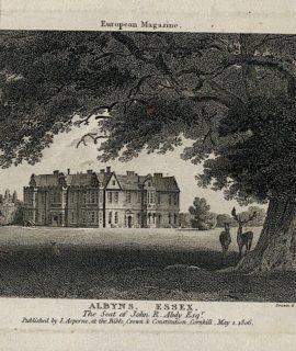 Antique Engraving Print, Albyns Essex, 1806