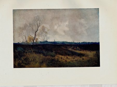 Vintage print, Danbury from the Common, 1908