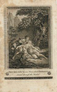Procris killed by an arron, wich Cephalus...