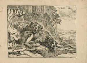 Rare Original Engraving, 1730 ca.