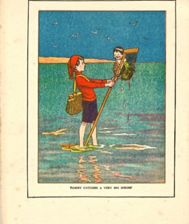 Rare Vintage Print, Tommy Catches a Very Big Shrimp, 1919