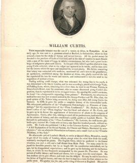 Antique Engraving Print, William Curtis, 1770 ca.