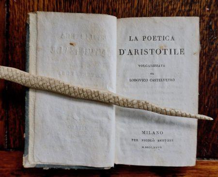 La poetica d'Aristotele volgarizzata da Lodovico Castelvetro, Milano , Bettoni, 1827