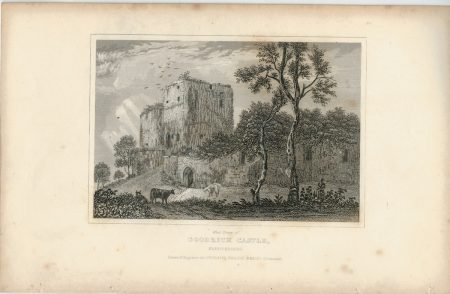 Lot of Antique Engravings Print, Castles, 1830 ca.