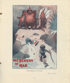 Vintage Print, The Descent of Man, 1908