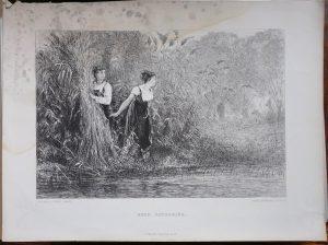 Antique Engraving Print, Reed Gathering, 1874