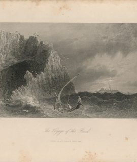 Antique Engraving Print, The Voyage of the Bird, 1845