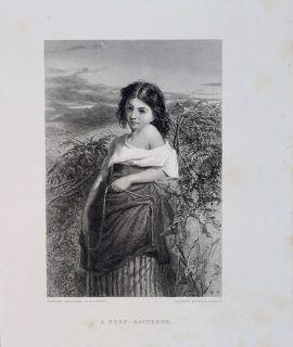 Antique Engraving Print, A Fern-Gatherer, 1873