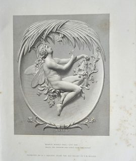Antique Engraving Print, Ariel, 1873