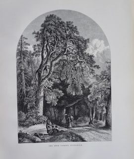 Antique Print, The Deer Garden, Stockholm, 1870