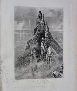 Antique Engraving Print, The Bent Cliff, 1881