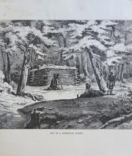 Antique Print, Hut in Norwegian Forest, 1870