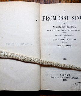 Manzoni, I promessi sposi, Milano, Fratelli Rechiedei Editori, 1885