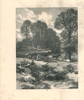 Antique Print, Landscape, 1871