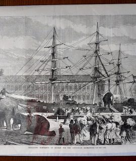 Antique Print, Embarking Elephants at Bombay for the Abyssinian Expedition, 1868