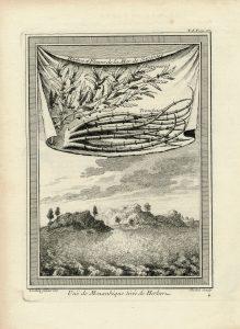 Antique Engraving Print, Vue de Mozanbique tirée de Herbers, 1755