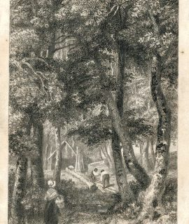 Antique Engraving Print, The Forest, Maple Durham, 1830