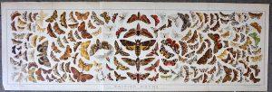Rare Large Vintage print, British Moths, 1880