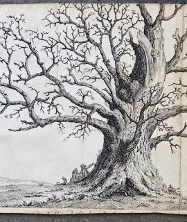 Antique Engraving Print, The Tree, 1760 ca.