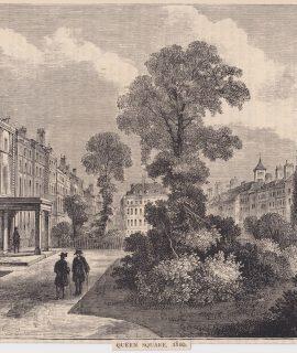 Antique Print, Queen Square, 1879