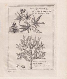 Antique Engraving Print, Bakka, 1748