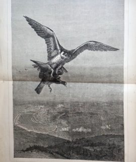 Antique Print, In the Clutch of the Enemy, 1871