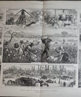 Antique Print, American Cotton: its cultivation and preparation in Mississippi, 1881