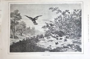 Antique Print, A family in danger, 1879