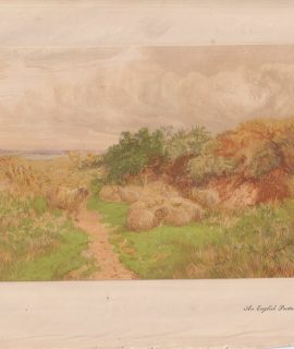 Antique print, An English Pasture by George Shalders, 1868