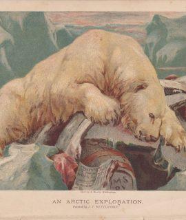 Vintage Print, An Arctic Exploration, 1887