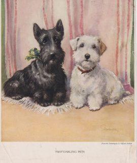 Vintage Print, Two Darling Pets, 1909