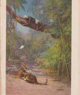 "Vintage Print, ""Up a tree!"" by C. Eswan, 1887"