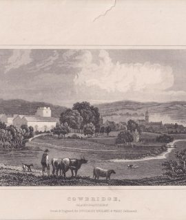 Antique Engraving Print, Cowbridge, Glamorganshire, Dugdales, 1820