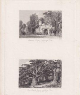 Antique Engraving Print, The Druid's Grove; Entrance Lodge, Norbury Park, 1845