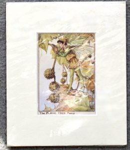Vintage Print, The Plane Tree Fairy, 1909