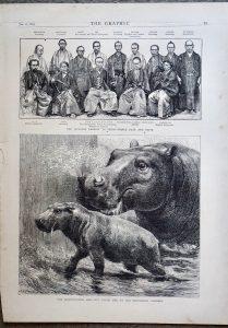 Antique Print, The Hippopotamus: The Japanese Embassy, 1872