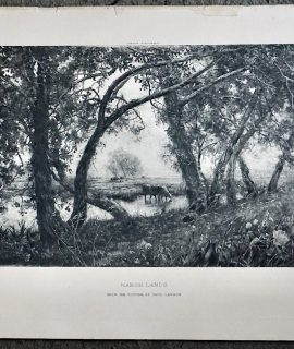 Antique Engraving Print, Marsh Lands, 1910 ca.