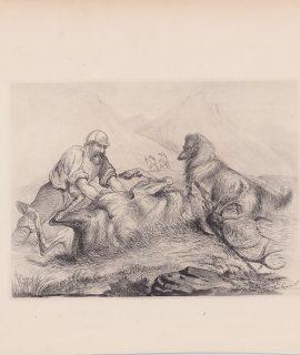 Antique Print, Hunting, 1881