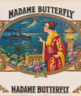 Vintage Engraving Print, Madame Butterfly, 1909