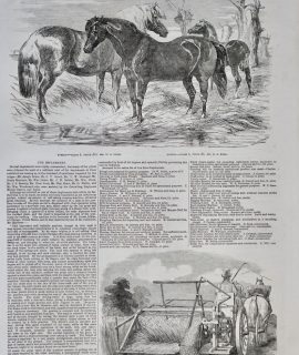 Antique Print, Ponies; Automaton or Self-raking reaper, 1853