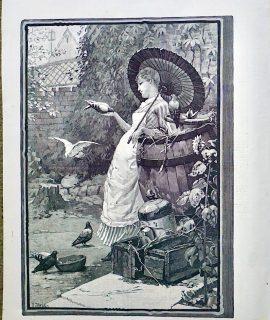 Antique Print, A Pigeon-Fancier, 1887