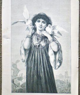 Antique Print, Les pigeons blancs, 1874