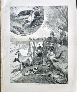 Antique Print, Coursing at Cleveland, Yorkshire, 1887