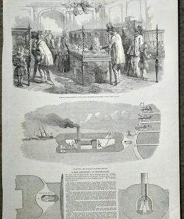 Antique Print, Annual Pigeon Show, 1853