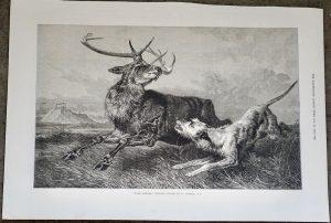 Antique Print, Hard Pressed, 1873
