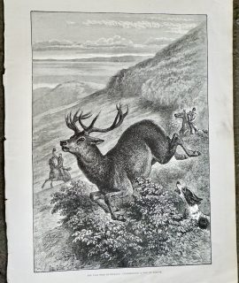Antique Print, The Wild West of England, 1888