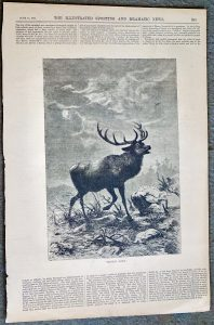 Antique Print, Hunted Down, 1874