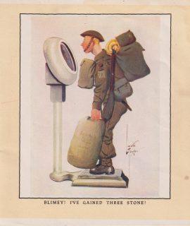 Vintage Print, Blimey! I've gained three stone! 1909 ca.